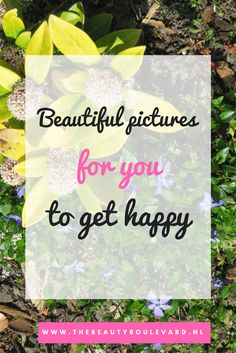 Do you love beautiful pictures? And do you love summer as much as I do? Then check out this blog for cool and amazing pictures.