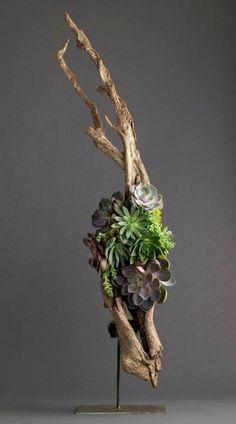 25+ best ideas about Ikebana on