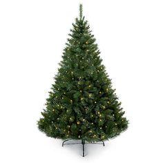 1.8m Woodland Pine