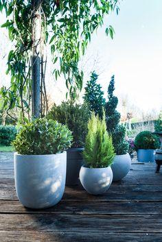 2x künstliche Sukkulenten Anlagen PVC Mini Gras Kunstpflanzen Landschaft