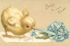 Free freebie printable vintage easter postcard, easter chick, forget me nots. TONS OF FREE VINTAGE EASTER POSTCARDS AT THIS SITE!!