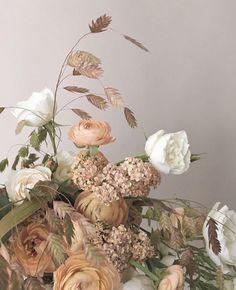 Behindmyribcage Eliza May Nehrybecki Fleurs Coupes Planter Des Jardin De Printemps