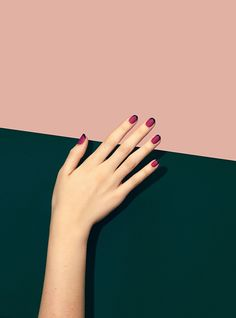 Trending French Nails Style This Winter 2019 28 The best new nail polish colors and trends plus gel Flower Nail Designs, Flower Nail Art, Acrylic Nail Designs, Nail Art Designs, New French Manicure, French Nail Art, French Manicures, Hand Pose, New Nail Polish