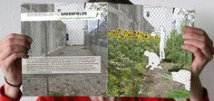 Urban Omnibus » From Brownfields to Greenfields: A Field Guide to Phytoremediation