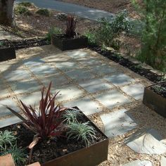Border With Black Mulch Patio Pavers Design, Pictures, Remodel, Decor And  Ideas