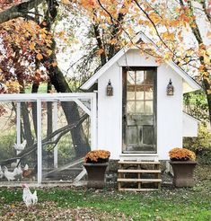 Gorgeous white chicken coop with potted plants by the door. Gorgeous white chicken coop with potted plants by the door.