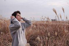 Ong Seongwoo Wanna One Ong Seongwoo, Jinyoung, Lai Guanlin, Fandom, Produce 101 Season 2, Kim Jaehwan, Ha Sungwoon, Thing 1, 3 In One