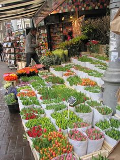 "We always stopped to buy flowers to take when visiting...my Dutch father was very strict about brining flowers...anjers (carnations) were his favorite. ""Bloemenmarkt, Amsterdam"""