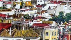 historical images of roof tops in portugal - Google Search
