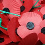 Photograph of Remembrance Poppies Resource teaching packs