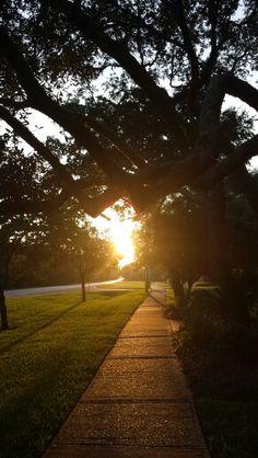 Early morning in Gulf Breeze. Gulf Breeze, Early Morning, Sidewalk, Country Roads, City, Side Walkway, Walkway, Cities, Walkways