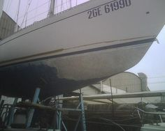 Ebarche.it annunci nautica gratuiti - Dettagli di User - sabbiareecologico