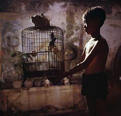 Un jour au #Vietnam - #1961 - Ville de #Saigon dans son faubourg de #Cholon sur le delta du #Mekong  un jeune garçon s'occupe de son oiseau au petit matin. Photo : Jack Garofalo / #ParisMatch by parismatch_magazine