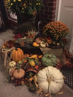 Gourds! Love them!!! Gourds, Pumpkins, Fall Decorating, Happy Fall, Wreaths, Vegetables, Home Decor, Decoration Home, Autumn Decorations
