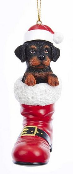 65 Rottweiler Dog Lover Ideas Rottweiler Dog Rottweiler Dog Lovers