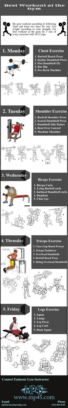 Best Workout at The Gym | Piktochart Infographic Editor