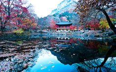 korea, one day