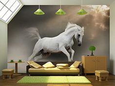 wall26 - White Arabian Stallion in Dust - Removable Wall Mural | Self-adhesive Large Wallpaper - 66x96 inches