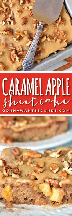 Caramel Apple Sheet Cake- Super Moist,  Deliciously Spiced, Cake loaded with chunks of fresh Apple all topped off with a Luscious Caramel Icing!
