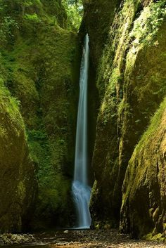Oneita Falls, Columbia River, Oregon.