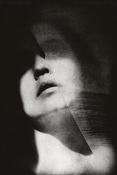 Caryn Drexl - Split