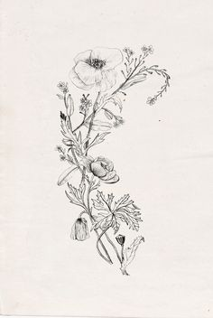 Floral illustration #tattoo #idea