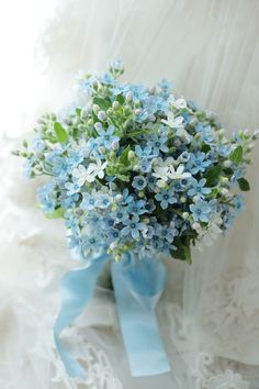 Sweet Wedding Bouquet Of Baby Blue Tweedia weddingbouquets is part of Wedding flowers - Beautiful Bouquet Of Flowers, Beautiful Flower Arrangements, Floral Arrangements, Beautiful Flowers, Bouquet Flowers, Ikebana, Arte Floral, Bride Bouquets, Bridesmaid Bouquet