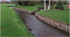 stream side erosion: gabion stabilization