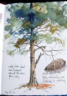 Cathy Johnson - at Lawson lake - sketchbooks - Watercolor Trees, Watercolor Landscape, Watercolor And Ink, Watercolour Painting, Watercolors, Watercolor Artists, Watercolor Portraits, Watercolor Sketchbook, Art Sketchbook
