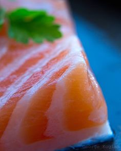 Salmon. Food photography. George Kogias