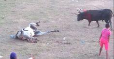 """Estas """"fiestas"""" son un despropósito y una tortura para los animales. En Cartagena, en el último día de la corraleja de Arjona, un toró embistió contra un caballo y lo dejó tirado, desangrándose en el suelo. Mientras todos miraban azorados. ¿Con qué necesidad insisten con esas prácticas? ¿No se dan cuenta, acaso, que mueren y mueren animales impunemente y en pos de una """"tradición"""" absurda? ¿Puede ser que estos festejos sean más importantes que la vida de los animales? Además, no solo ellos…"""