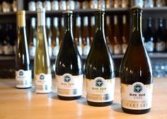Blue Bee Cider to Bring a New Flair to Scott's Addition