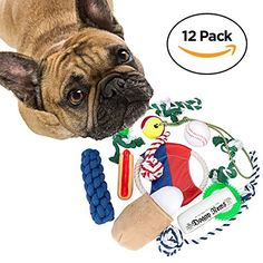 Save 17% on Dog Toys 12 Piece Set - Chew Toys Includes Balls Flying Discs Ropes and more  Save 17% on Dog Toys 12 Piece Set - Chew Toys Includes Balls Flying Discs Ropes and more  Expires Sep 2 2017