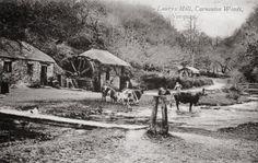 LAWRY'S MILL | Carnanton Woods, Newquay, Cornwall     ✫ღ⊰n