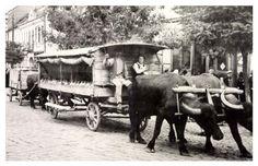 Székeyudvarhely:borvizes székely szekér a Kossuth utcában,1942. Budapest, Cow, Retro, Animals, Animales, Animaux, Cattle, Animal, Animais