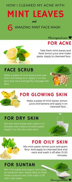 homemade mint face pack - There is always a better way to treat skin naturally without any side effects. Check out 6 homemade mint face pack and my experience with mint on skin.