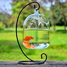 This fantastic Fish Observation Tower is perfect for your garden pond. The fish stay comfortable and happy in their watery home with the added space of the glass observation tower so you can enjoy watching them. Check out the DIY Fish Pond and the Aquarium Coffee Table too!