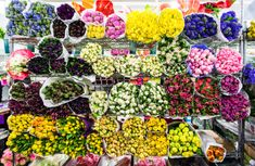 NYC flower district...