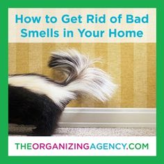 How To Clean Body Odor From A Pillow Top Mattress Home
