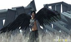 Item of the Week - Wings (4)
