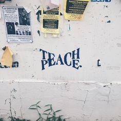 Teach peace ✌️ Pinterest: KarinaCamerino