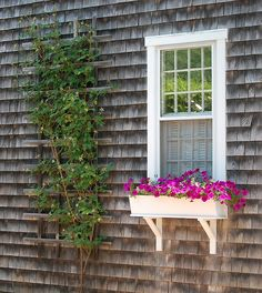 Home window yard is a plant put in a box outside the window. If there is still little room outside the window, it can be used to make the plant box. Window Box Flowers, Window Boxes, Flower Boxes, Porch Boxes, Garden Windows, Cottage Windows, Exterior Trim, Cottage Exterior, Plant Box