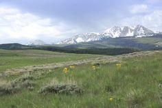 bridger mountain ridge line - Google Search
