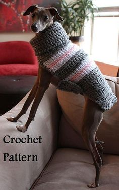 Ravelry: Crocheted Small Breed Dog Sweater  Snood pattern by Angela Curtis
