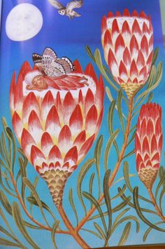 """Fiona Moodie illustration for """"Fynbos Fairies"""". South Africa Art, Bloom Where You Are Planted, South African Artists, Magic Spells, Plant Species, Flower Art, Art Flowers, Children's Book Illustration, Faeries"""