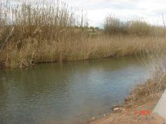 El riu tranquil