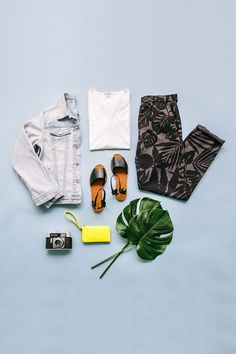 flat lay with greenery and pacifier