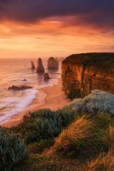 Only The Strongest Survive. - 12 Apostles at port campbell, National Park.  Darren J.
