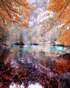 Blausee - Switzerland Share your fall photos and include #BHAutumn #BDAutumn