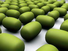 Go Organic with Goji Berries Healthy Recipe - Healthy Food Raw Diets Organic Herbs, Natural Herbs, Natural Oils, Healing Herbs, Medicinal Herbs, Moringa Oleifera Benefits, Moringa Recipes, Miracle Tree, Herbs For Health